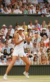 Maria Sharapova - Page 3 Th_38643_Maria_Sharapova_Wimbledon_070406_26_124lo